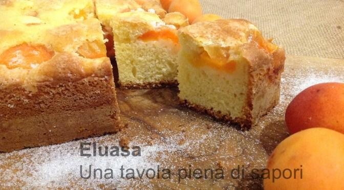 Torta golosa con albicocche