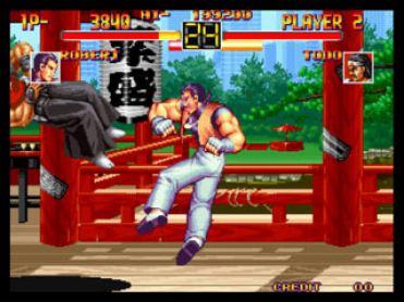 Art of Fighting2