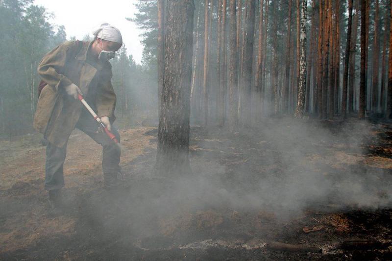 Extinguishing Wildfires 37
