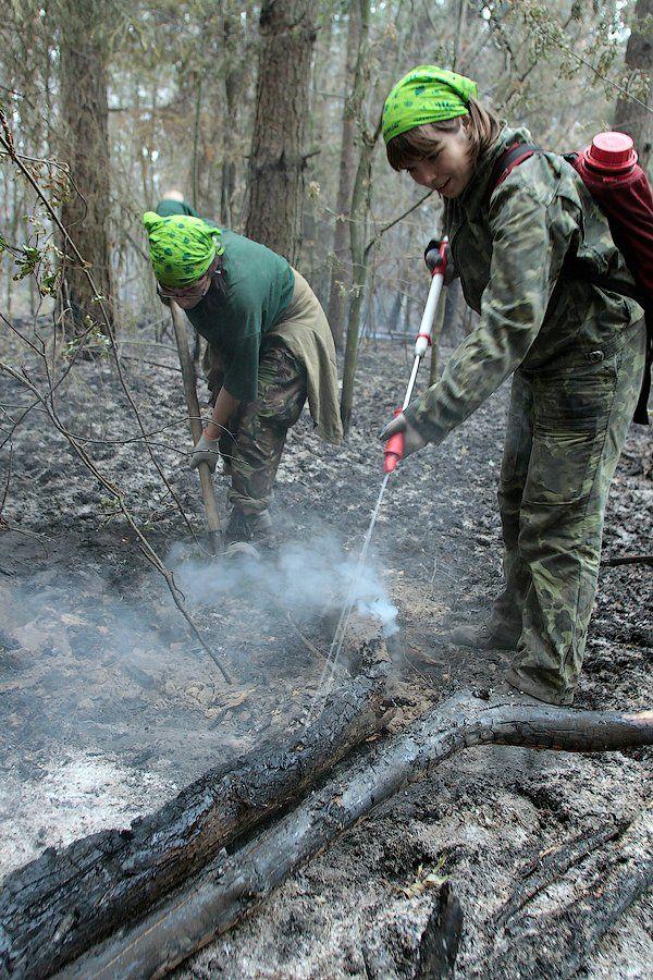 Extinguishing Wildfires 44