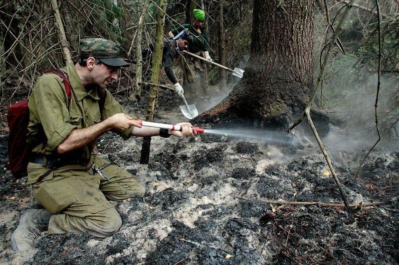 Extinguishing Wildfires 49