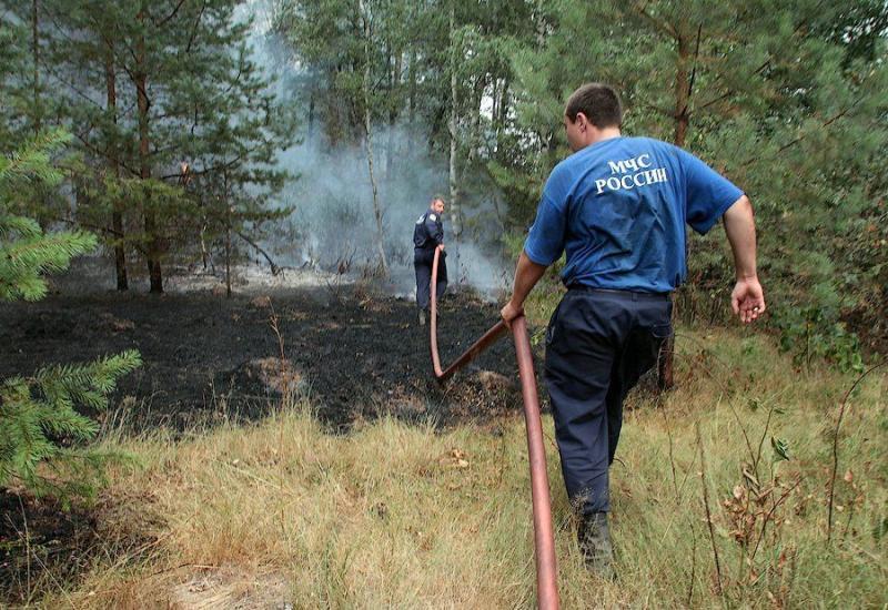 Extinguishing Wildfires 56