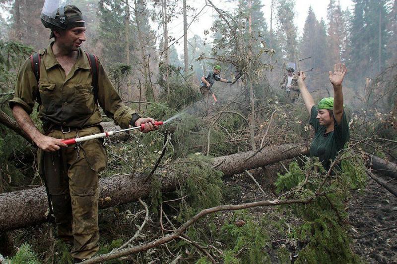 Extinguishing Wildfires 61