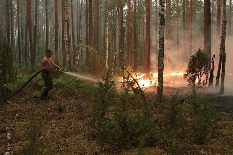 Extinguishing Wildfires 7