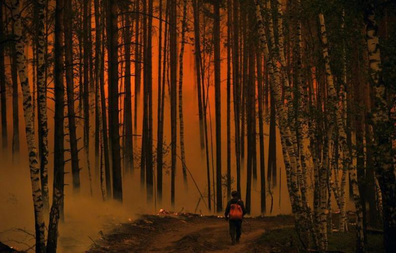 Extinguishing Wildfires 79