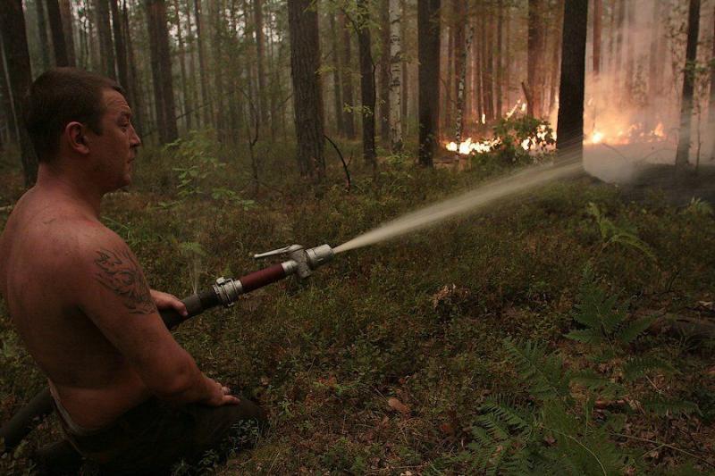 Extinguishing Wildfires 9