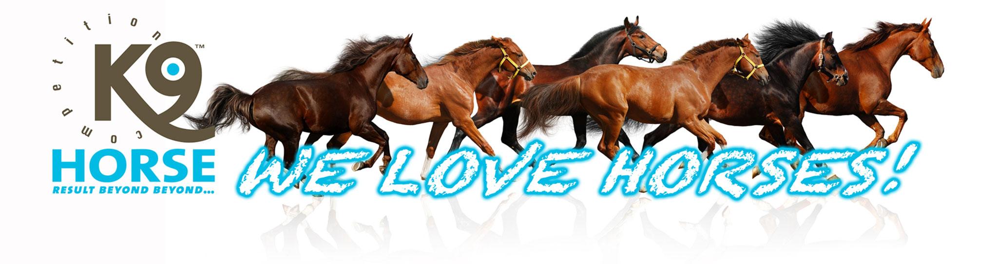 K9 Horse Banner