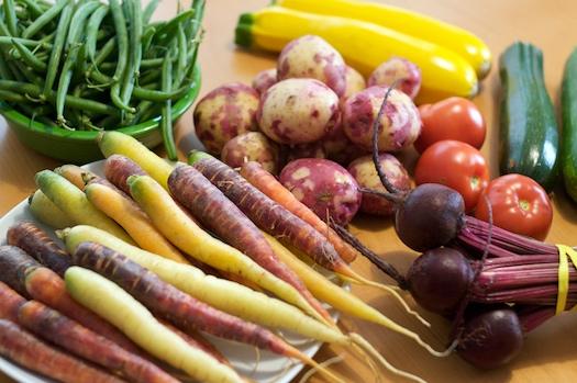 Copley Square Farmer's Market Bounty