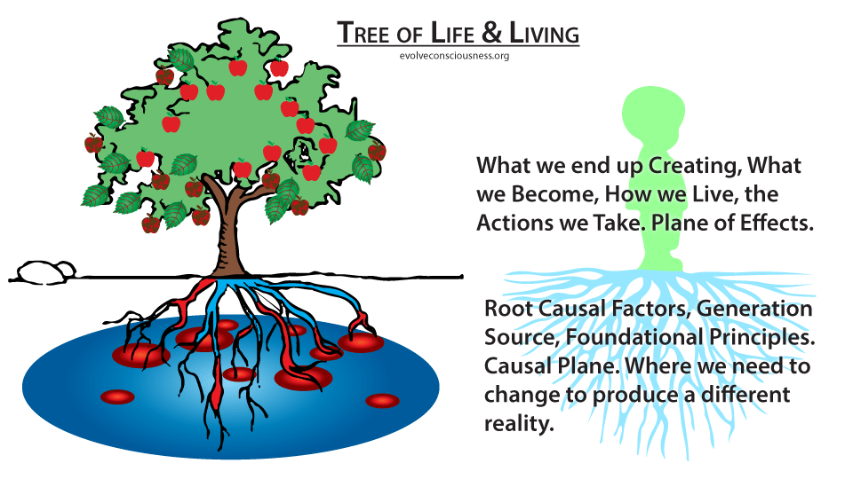 Get to the Root Cause