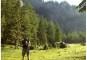 Amenzi usturătoare pentru turiștii de la munte. Ce să nu faci în vacanță