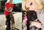 Câinii lui Lady Gaga au fost furați. Îngrijitorul lor, împușcat în plină stradă