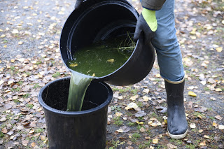 Gödselvatten Farbror Grön