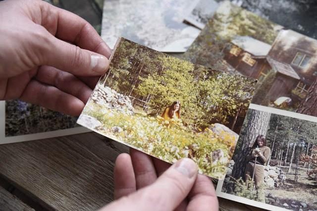 Fotografier över skogsträdgården Farbror Grön