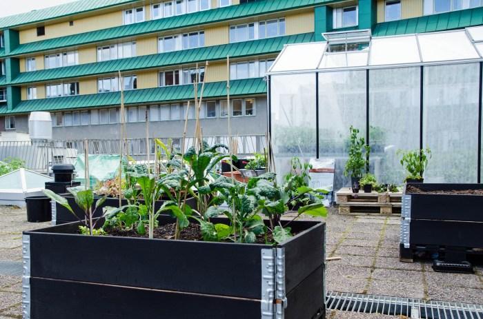Fiberduk på insidan av takfarmens växthus.