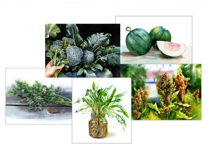 Illustrationer från boken Flera fingrar gröna