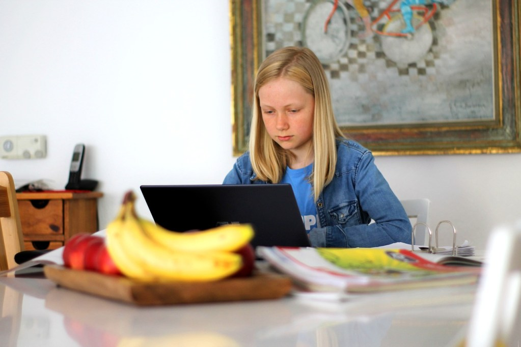 This image has an empty alt attribute; its file name is homeschooling-5121262_1280.jpg