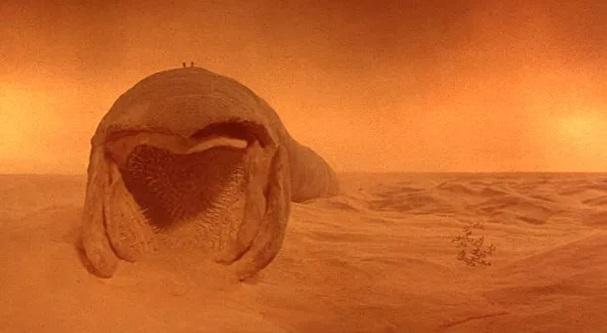 dune 607