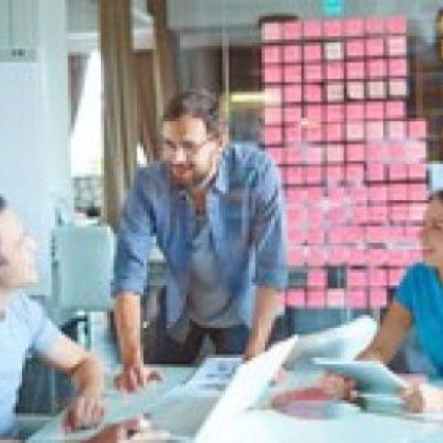 Project Management : the Fundamentals