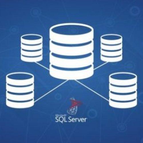 SQL Server Veritabanı Programlama: Tüm Seviyeler