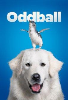 مشاهدة وتحميل فلم Oddball and the Penguins غريب الأطوار والبطاريق  اونلاين