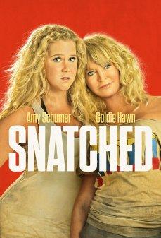 تحميل فلم Snatched مُختطَف اونلاين