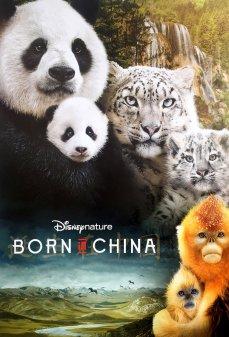 تحميل فلم Born in China  اونلاين