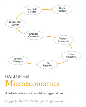 The Gallup Path: Microeconomics
