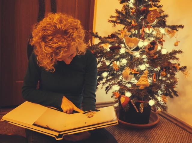 Sapin De Noël En Pot Avantages Et Entretien