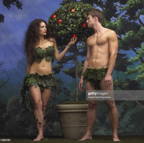 Adam And Eve With Apple Tree In Garden Of Eden High-Res ...