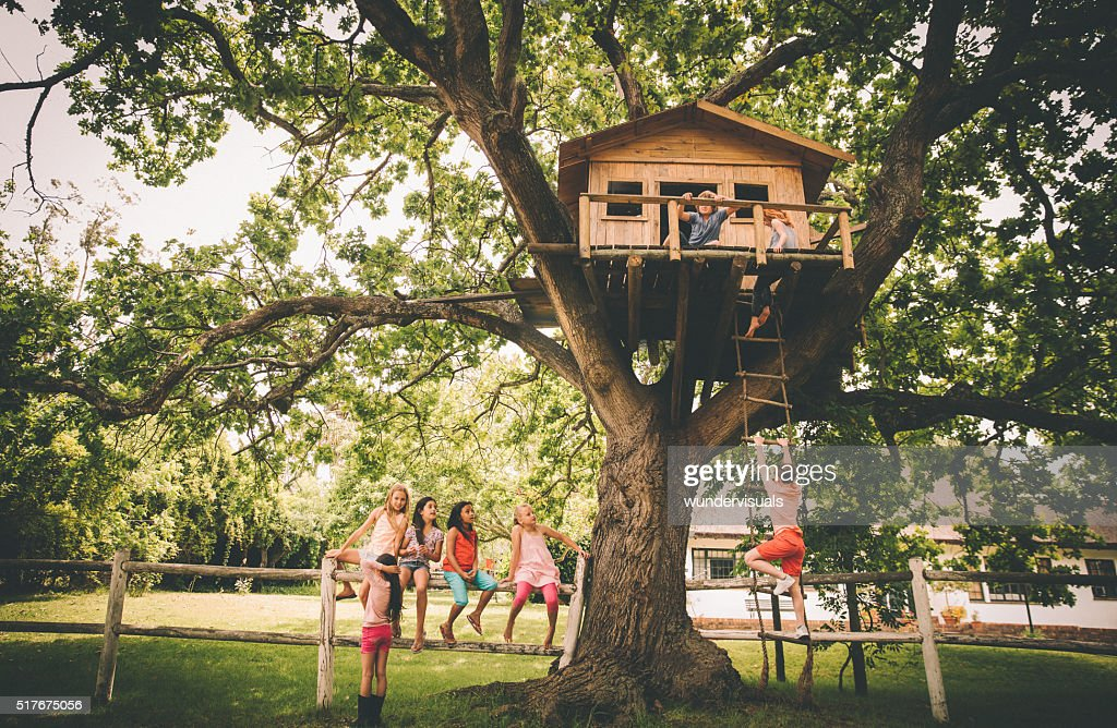 14 746 Tree House Photos And Premium High Res Pictures Getty Images