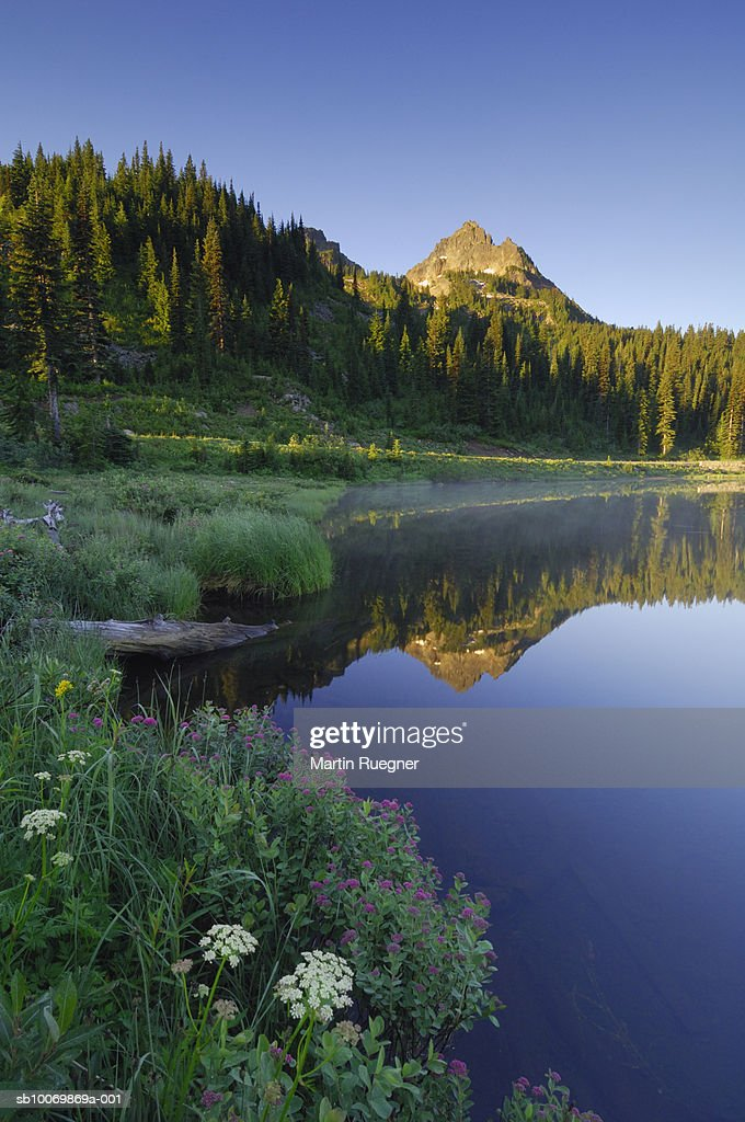 Whether you're traveling with friends, family, or even pets, vrbo vacation homes have the best amenities for hanging out with the people that matter most, including wifi and fireplaces. Usa Washington State Pierce County Cascade Range Mt Rainier National Park Stock Foto Getty Images