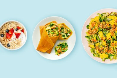 vegan meal delivery examples