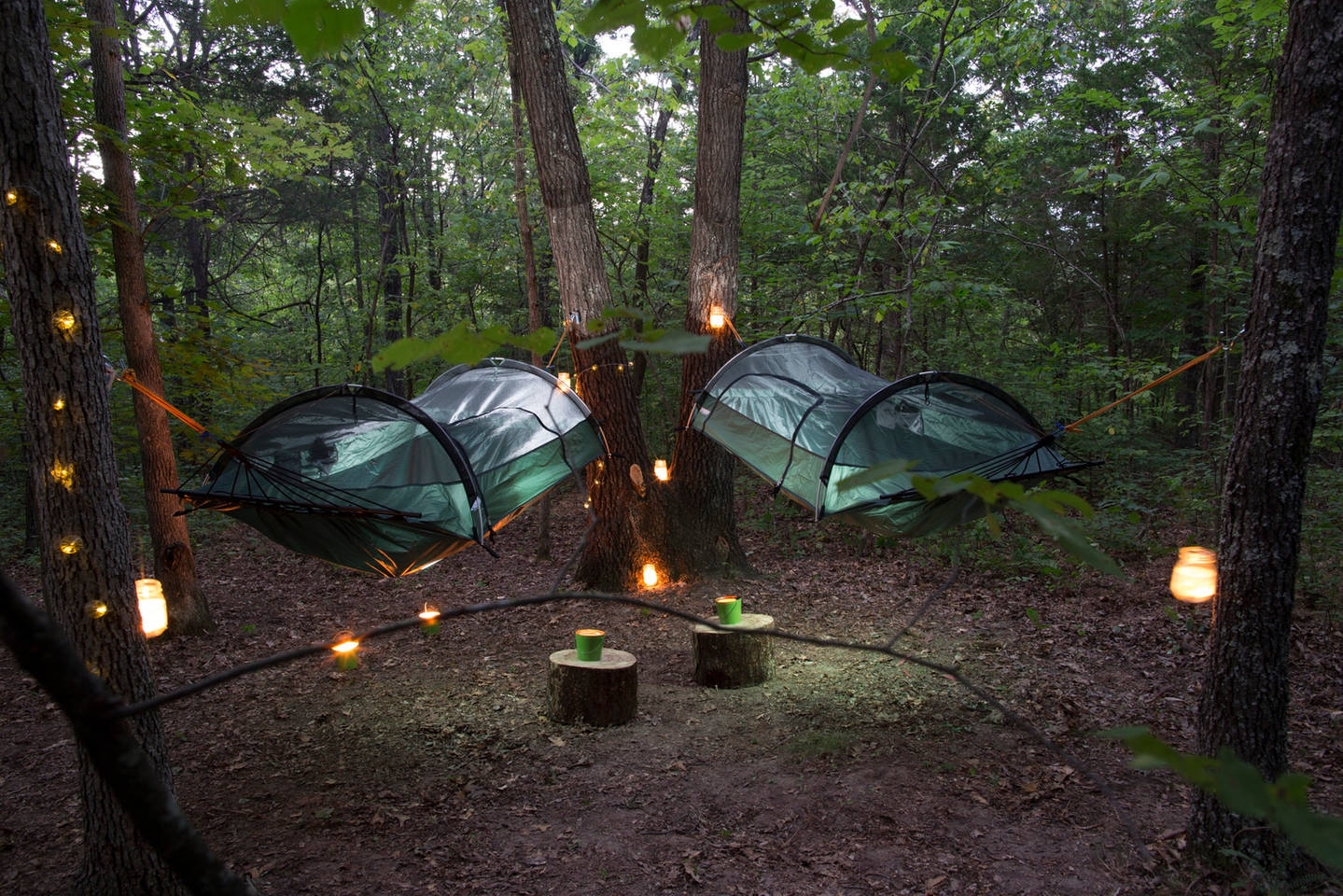 Hanging Tree Tent Rentals In 16 Acre Forest Park Hills