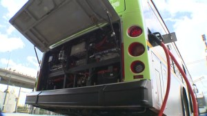 Calls for more electric buses in Metro Vancouver