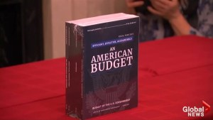 Trump's 'American Budget' unveiled: what are the spending priorities?