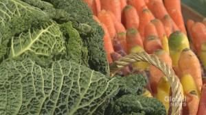 Quebec unveils ambitious food plan