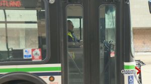 Bus driver safety in question in Okanagan