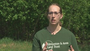 Edmonton farmer seeks to keep developers out