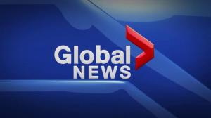 Global News Hour at 6 Edmonton: Feb. 8