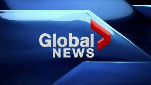 Global News at 6: Aug. 6, 2019