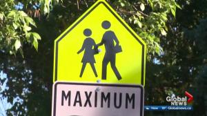 Edmonton city council votes to remove 41 playground zones