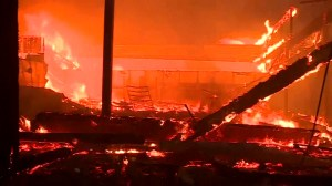 Flames burn through homes in California as Camp Fire rages in state
