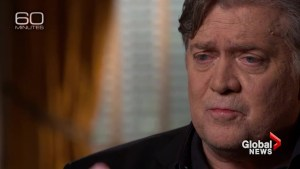 Steve Bannon says any Republicans who don't support Trump's agenda will be eliminated