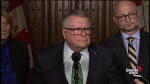 There are consequences for Canadians leaving to fight in a warzone: Goodale