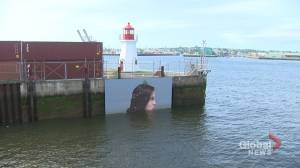 'Hula' completes second mural on Saint John sea wall
