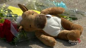 3-year-old boy found inside hot vehicle in Burlington died from hyperthermia: police (02:04)