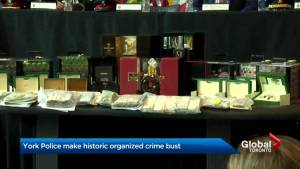 York Regional Police make largest traditional organized crime bust