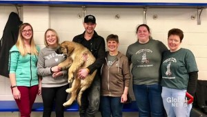Paul Brandt adopts puppy from Lethbridge Humane Society