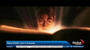 The cast of Harry Potter Live