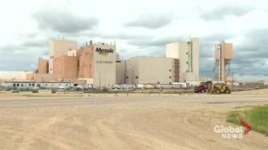 Mosaic laying off more than 300 workers at Colonsay potash mine